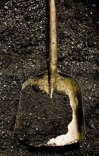Shovel by lanchongzi via Flickr
